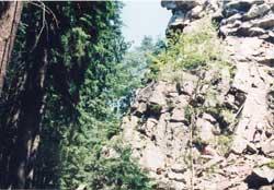 Vysočina - Čtyři palice